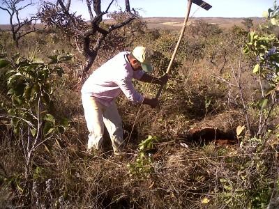 Masolene Emater implanta projeto de agroextrativismo agosto 2010 (30)